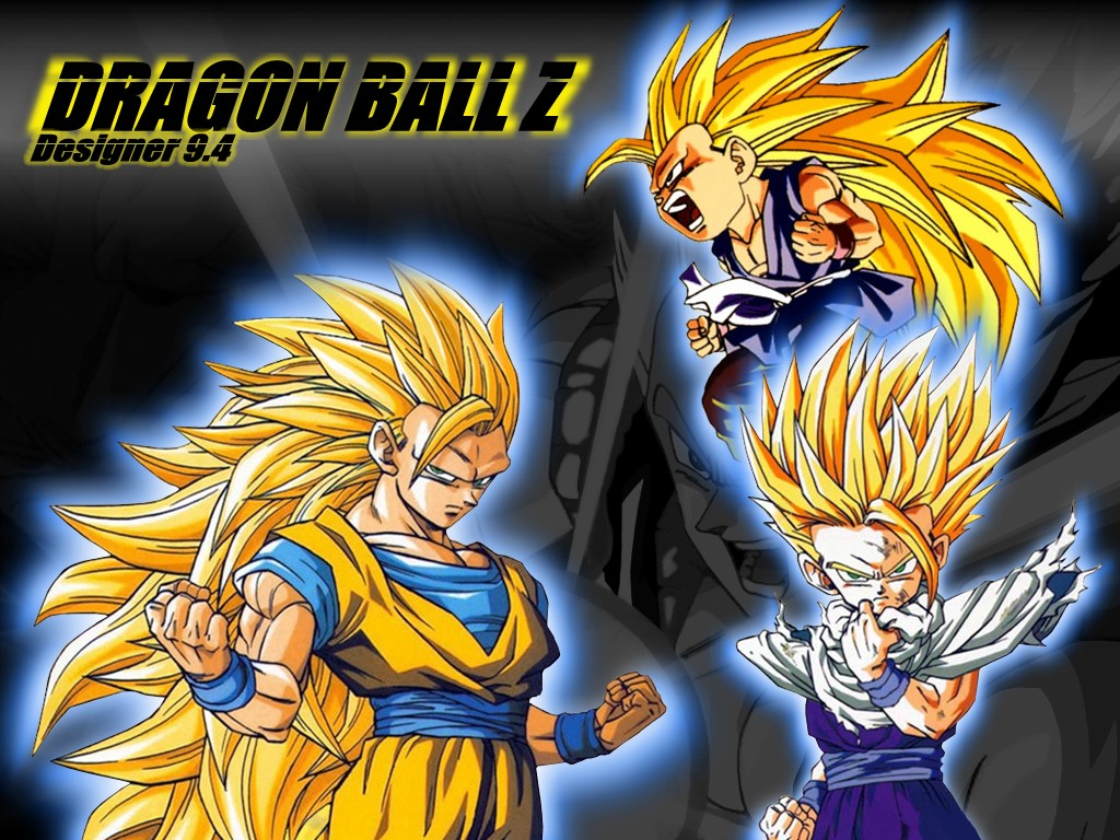 Dragon Ball Z Goku and Gohan